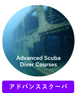 NAUI Advanced Scuba Diver Courses